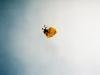 skydiving025